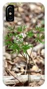 Black Cohosh IPhone Case