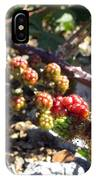 Blackberry On The Rock 02 IPhone Case