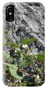 Blackberry On The Rock 04 IPhone Case
