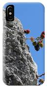 Blackberry On The Rock Top. Square Format IPhone Case