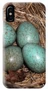 Blackbird Mums Eggs IPhone Case