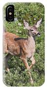 Blacktail Fawn IPhone Case
