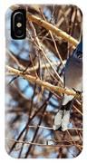 Blue Jay Thinking IPhone Case