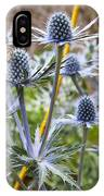 Blue Stem Sea Holly IPhone Case