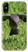 Bluebird In Flight IPhone Case
