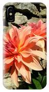 Blushing Peach Dahlias IPhone Case