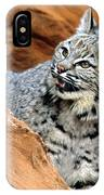 Bobcat With A Smile IPhone Case