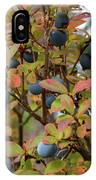 Bog Bilberry IPhone Case