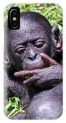 Bonobo 2 IPhone Case