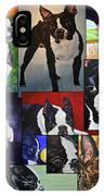 Boston Acrylic Collage IPhone Case