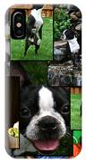 Boston Terrier Photo Collage IPhone Case
