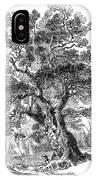 Botany: Oak Tree IPhone Case