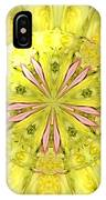Bouquet Of Roses Kaleidoscope 12 IPhone Case