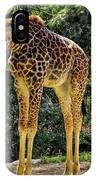 Bowing Giraffe IPhone Case