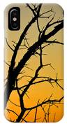 Branches Reaching The Sunset IPhone Case