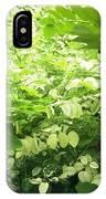 Breynia Disticha 'roseopicta' IPhone Case