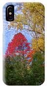 Bright Autumn Color IPhone Case