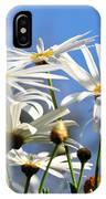 Bright Daisies IPhone Case