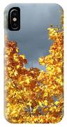 Brilliance Before The Storm IPhone Case