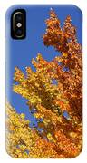 Brilliant Fall Color And Deep Blue Sky IPhone Case