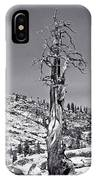 Bristlecone Pine - High Sierra IPhone Case