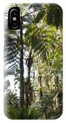 Bromeliad And Tree Ferns  IPhone Case