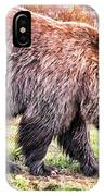 Brown Bear 202 IPhone Case