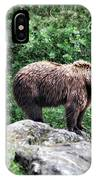 Brown Bear 208 IPhone Case