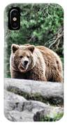 Brown Bear 209 IPhone Case