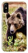 Brown Bear 210 IPhone Case