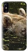 Brown Bear Swimming IPhone Case
