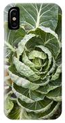 Brussels Sprout Plant IPhone Case