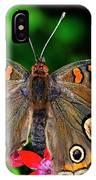 Buckeye Buttterfly IPhone Case