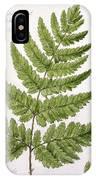 Buckler Fern IPhone Case