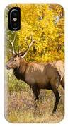 Bull Elk Autum Portrait IPhone Case