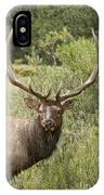 Bull Elk Eyes IPhone Case