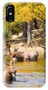 Bull Elk Watching Over Herd 4 IPhone Case