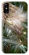 Bull Thistle IPhone Case