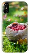 Bunch Of Cranberries IPhone Case