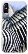 Burchells Zebra Equus Quagga IPhone Case