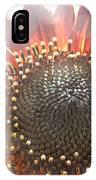 Burgundy Sunflower In Sun Rays IPhone Case