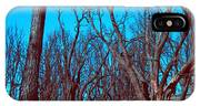 Burned Trees And The Sky IPhone X Case