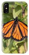 Butterfly - Monarch - Resting IPhone Case