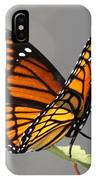 Butterfly - Sitting On The Green IPhone Case