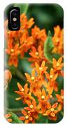 Butterfly Milkweed IPhone Case