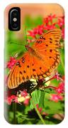 Butterfly On Pentas IPhone Case