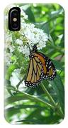 Butterfly On The Butterfly Bush IPhone Case