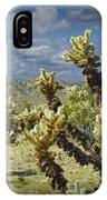 Cactus Also Called Teddy Bear Cholla IPhone Case