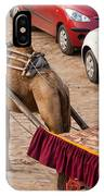 Camel Ready To Take Tourists For A Desert Safari IPhone Case