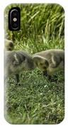Canadian Goose Gosslings IPhone Case